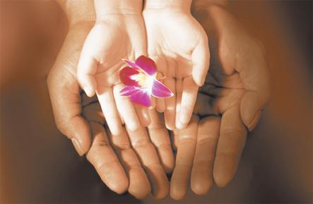 Ateliers de relaxation et méditation Heartfulness