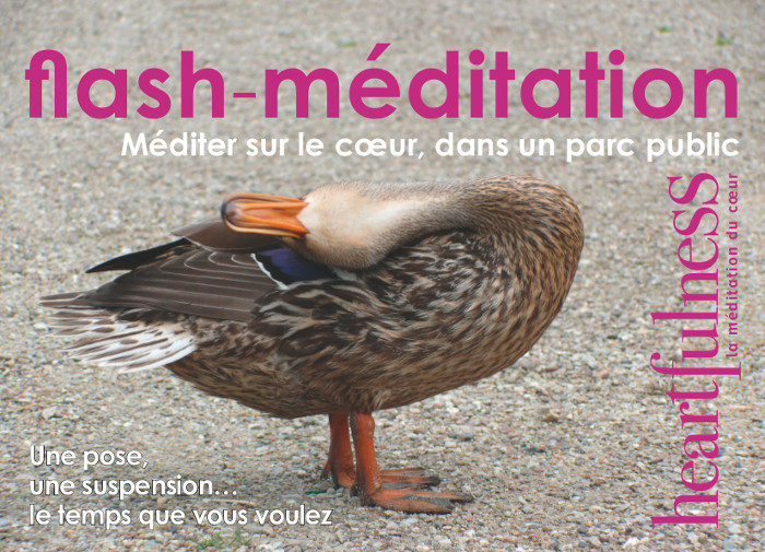 Flash-méditation à Lausanne
