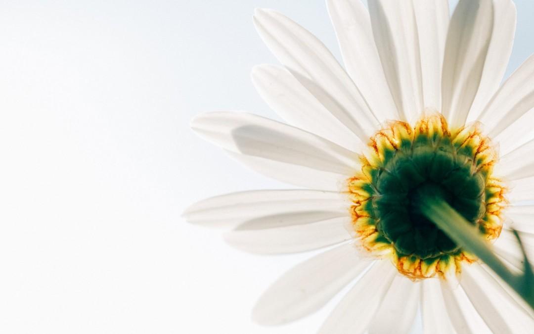 Science et Méditation – La Tour d'Aigues (84)