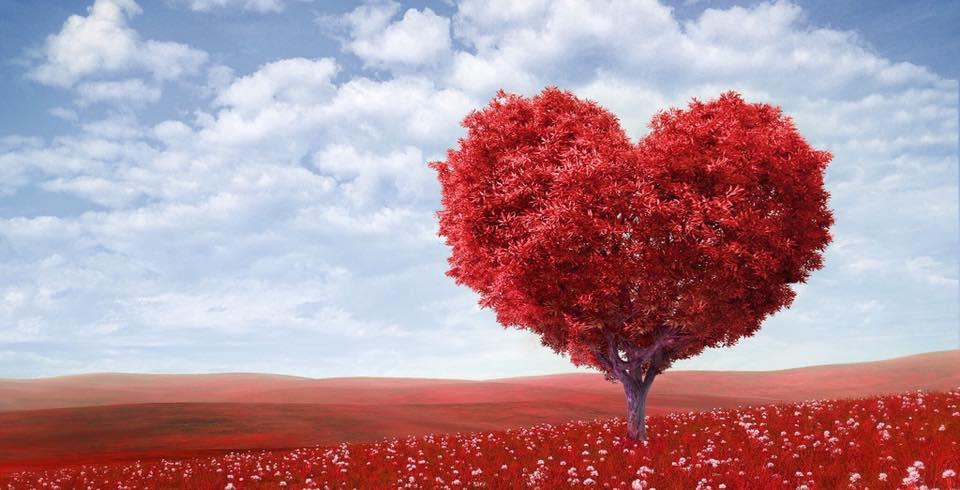 Atelier Heartfulness ••• Tubize (BE, Centre Heartfulness)