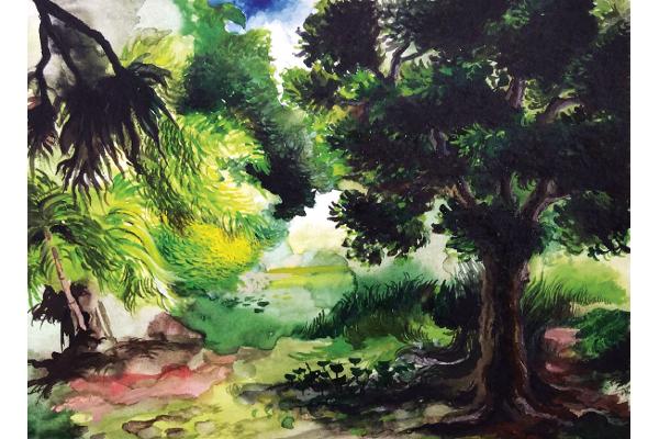 Art & méditation forêt